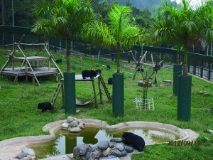 Animals Asia Foundation bear sanctuary in Vietnam.  (AAF photo)