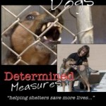 Review:   Desperate Dogs:  Determined Measures,  by Robert Cabral
