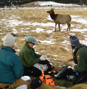 Mid-abdomen shot in Rocky Mountain Park.(Jon Geller)