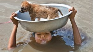 Vietnamese girl & her dog.  (Kairos Coalition)