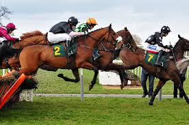 The Grand National is the biggest event in British horse racing and in jumps racing globally.  (PETA-UK photo)