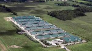 "Cornucopia Institute aerial photo of a purported ""free range"" egg farm."