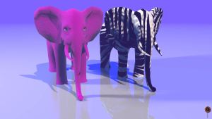 Animated Visions | The Aesthetic Elephants