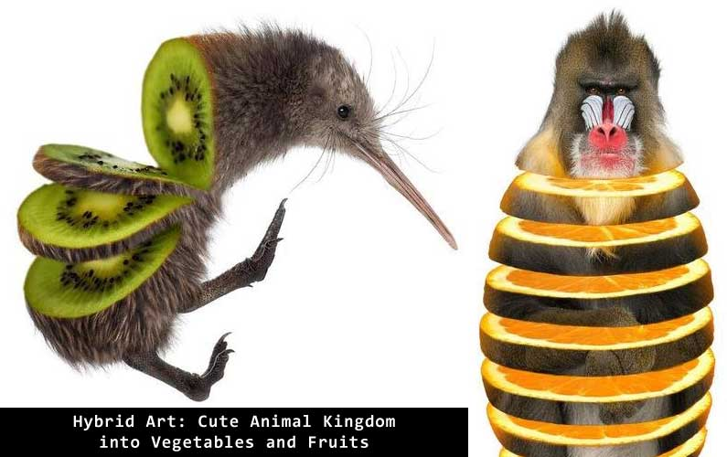 Hybrid Art: Cute Animal Kingdom into Vegetables and Fruits