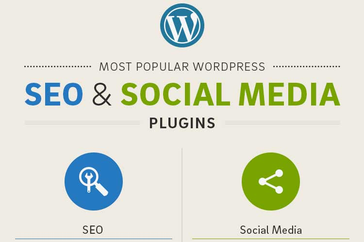 Infographics: Popular WordPress SEO Media Plugins