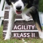 Agility klass II