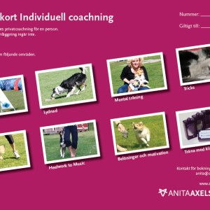 Presentkort individuell coachning A4