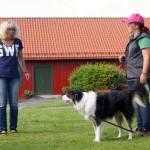 Individuell coachningI Karlstad och online
