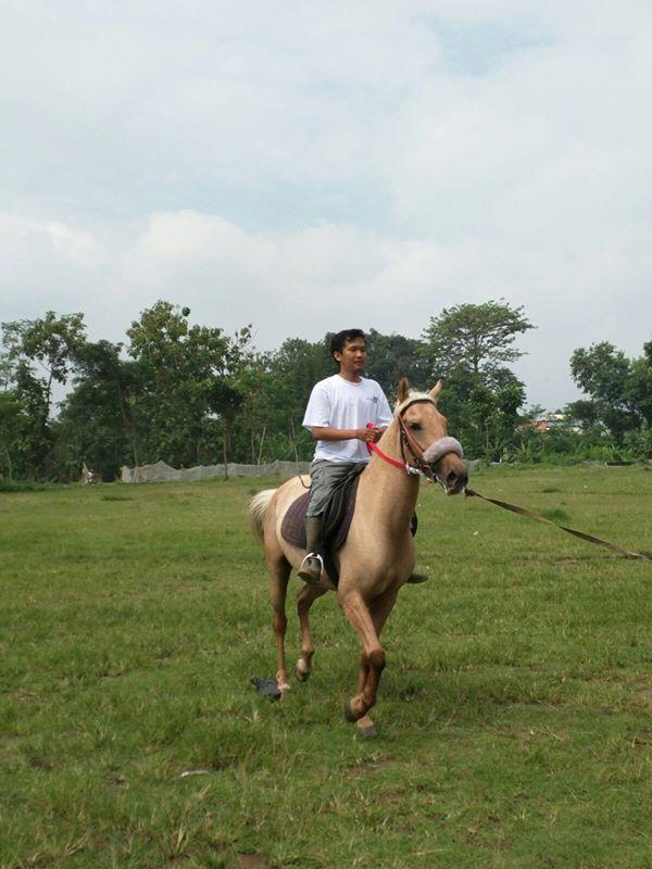 Cara Berkuda Yang Baik, Berlatih Menunggang Kuda Pacu di Klaten