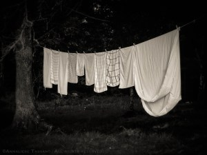 Kitchen towels and a sheet dry on a line tied up in the trees in County Claire, Ireland.