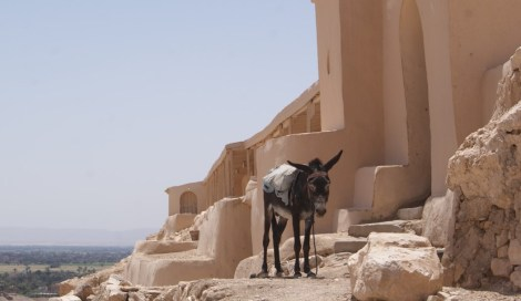In ancient times and today, water is brought to the site via donkey.