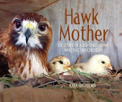 Cover of book shows mother hawk with two baby chickens
