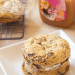 Banoffee Sandwich Cookies