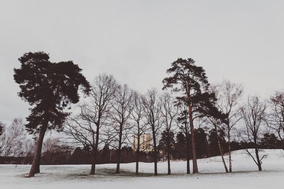 Krispigt blå, bitande iskall vinter