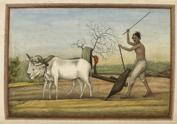 Jat, a numerous tribe spread over much of north-west India. Once warriors, now mostly agriculturists. Represented by a man ploughing with oxen.