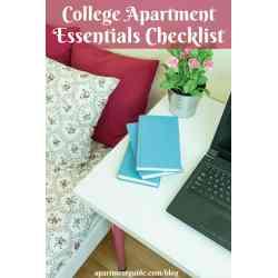 Small Crop Of Minimalist Student Apartment