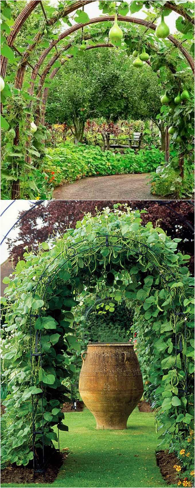 Fullsize Of Vertical Garden Trellis