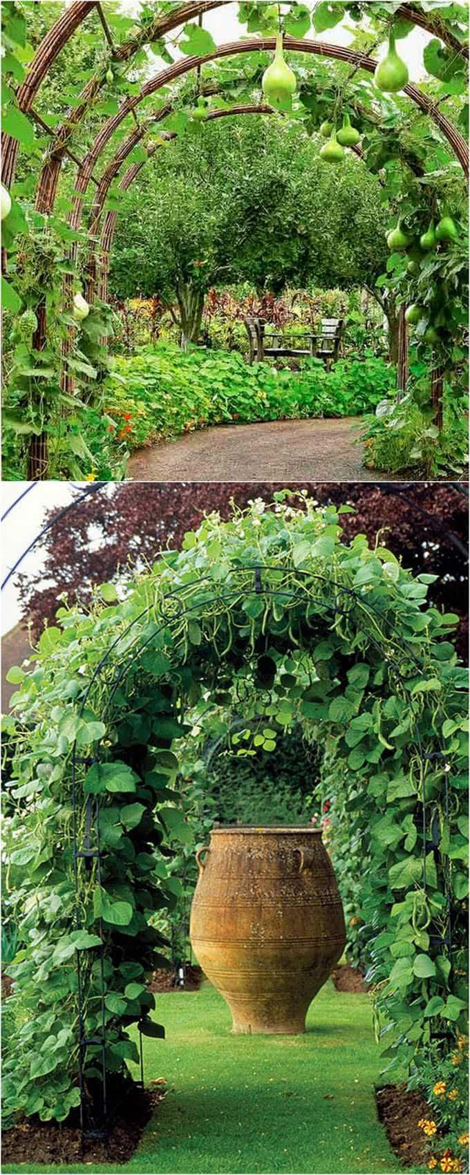 Large Of Vertical Garden Trellis