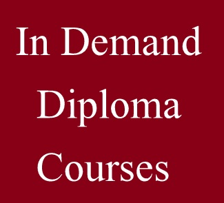 Diploma courses in demand