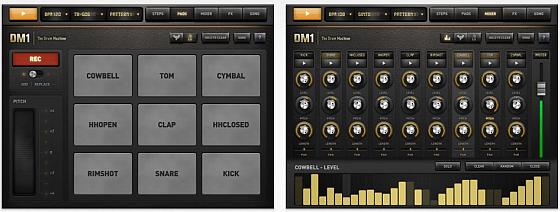 DM1 für iPad