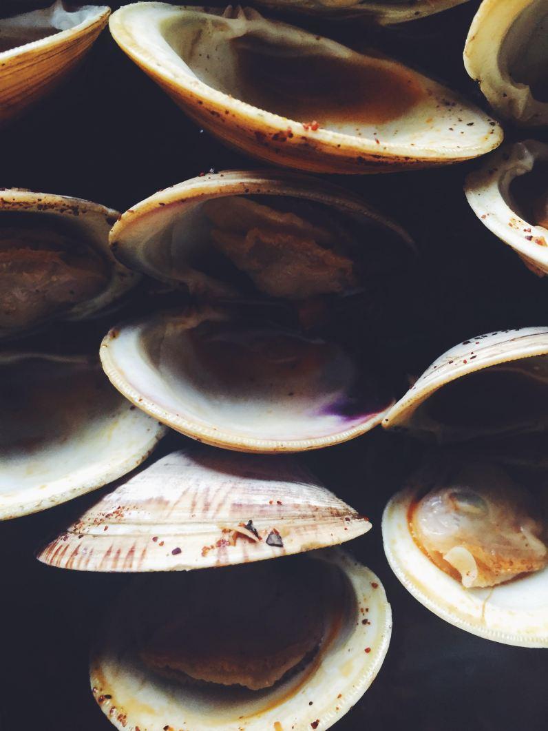 appeasing-a-food-geek-clam-pasta-5