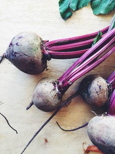 appeasing-a-food-geek-roasted-root-vegetables-9