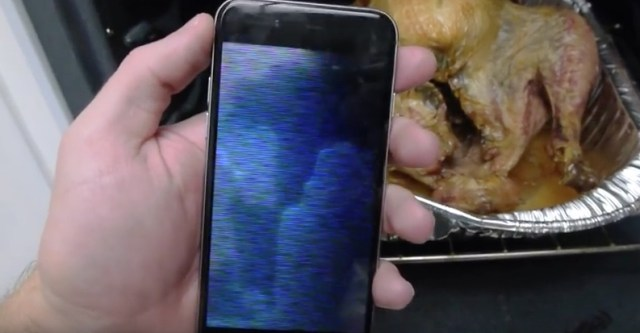 iPhone 6 Baked Inside Turkey