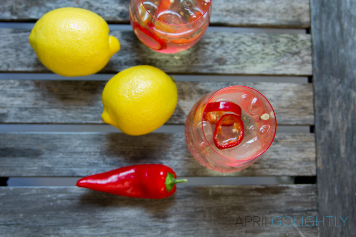 Zesty Wine Spritzer Recipe_-7
