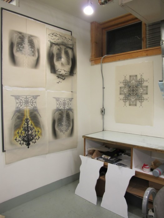 I began with x-ray image on washi, and moved to panels later