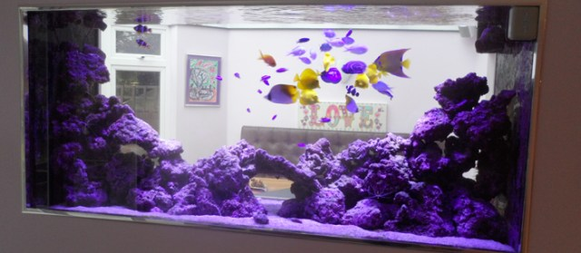 Marine Tank Maintenance, Aquatic Maintenance | Aquatic Care in