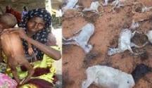 Laba Muuqaal oo Abbaarta Xoolaha iyo dadka ee deegaanka galbeedka Somaliland ah