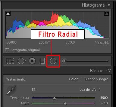 filtro-radial