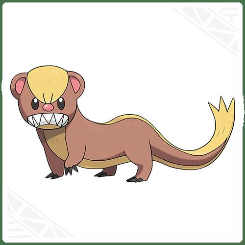 Pokemon Nuevo 02
