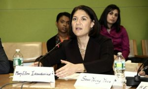 049 300x180 Panel at UN Explores Women's Empowerment and Sustainability in Armenia