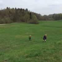 Spaziergang Aubinger Lohe