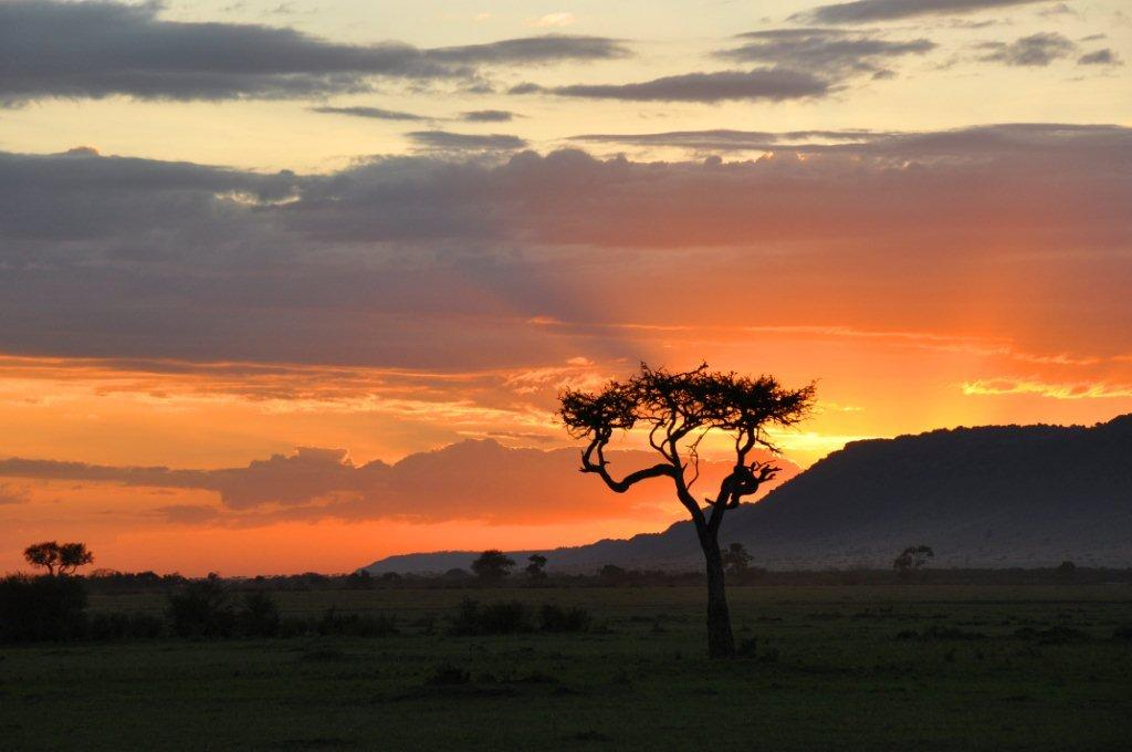 Kenya Safari Sunset