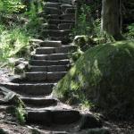 Steintreppe im Felsenlabyrinth Luisenburg