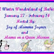 Winter Wonderland Of Babies Giveaway Event