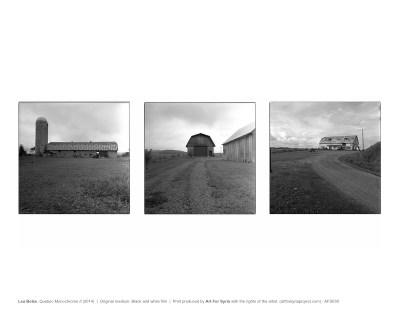 Art_For_Syria-AFS030-Lea_Bolze-Quebec_Monochrome_II-web_letter