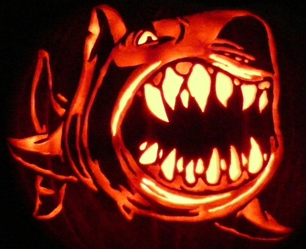 pumpkin shark