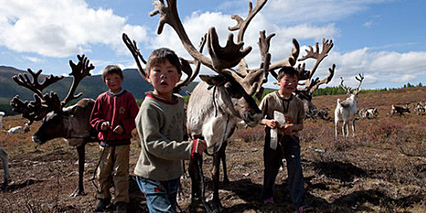 Dukha children playing with their reindeer, (http://hamidsardarphoto.com/).