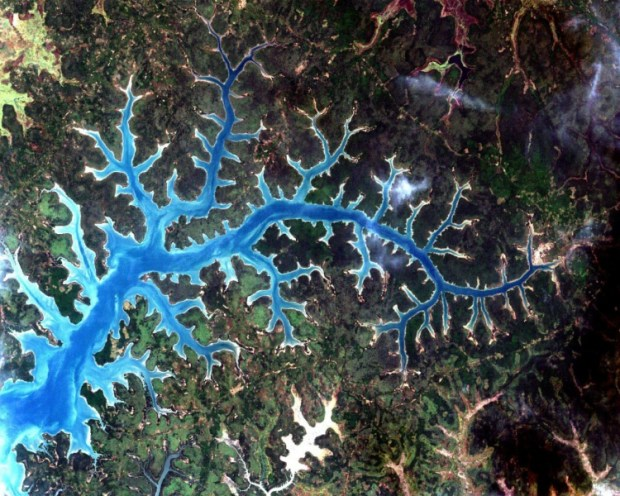 Real life monsters of the deep: False color satellite image of a river delta.