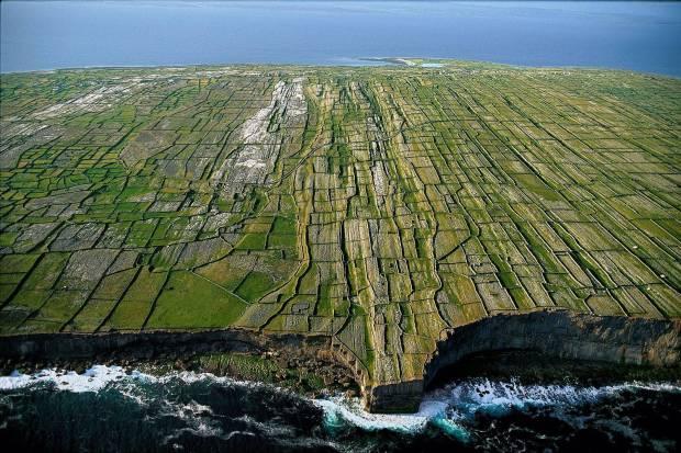 (BEM Ireland).