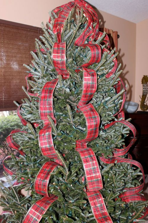 Medium Of How To Decorate A Christmas Tree With Ribbon