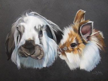 lapins nains aux pastels