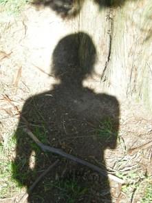 shadow-plant-5