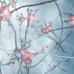 Probing The Unknowable Mysteries Of The Brain