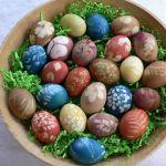 planbt_egg