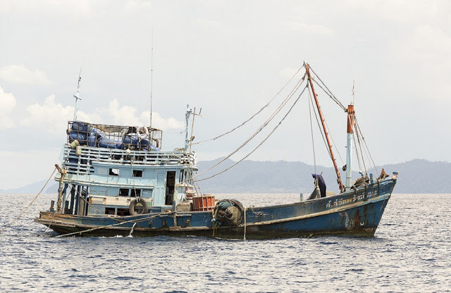Asam news where the conversation about asian america begins for Fishing supplies honolulu