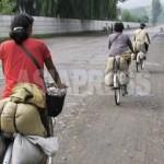 단속을 피하기 위해 뒷길로 자전거를 질주하는 '되거리' 여성들. 농촌에서 도시로 식량을 운반하고 있다. 2008년 8월 평양시 근교의 농촌지역에서 촬영 장정길(아시아프레스)